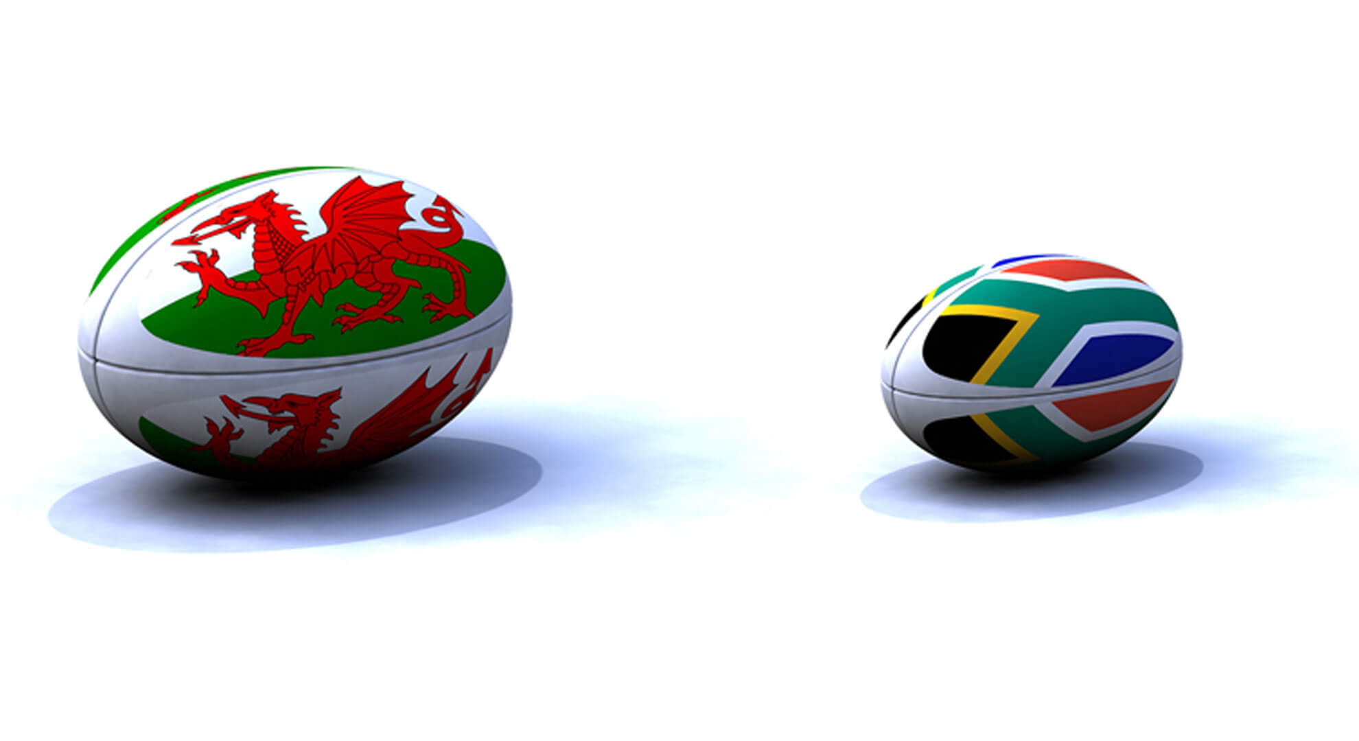 Autumn Rugby International - Wales v South Africa